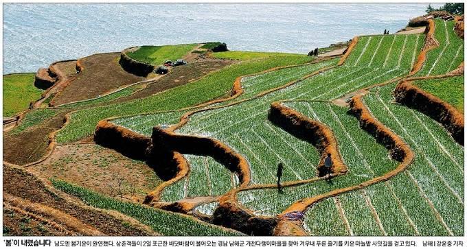 3월3일자 경향신문 1면 사진 캡처.