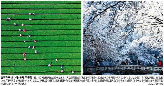 세계일보 4월 9일 1면 사진
